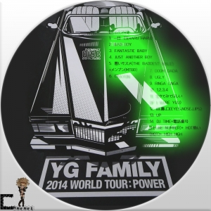 2014 YG Family Concert in Seoul Live2