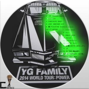 2014 YG Family Concert in Seoul Live2