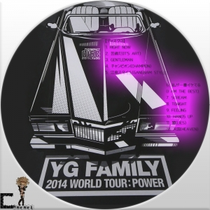2014 YG Family Concert in Seoul Live3