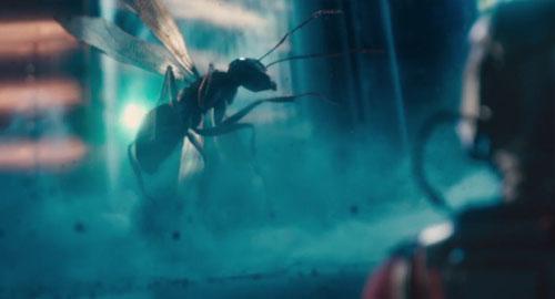 ant-man4.jpg