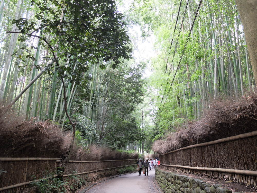 京都・嵐山 竹の小路02