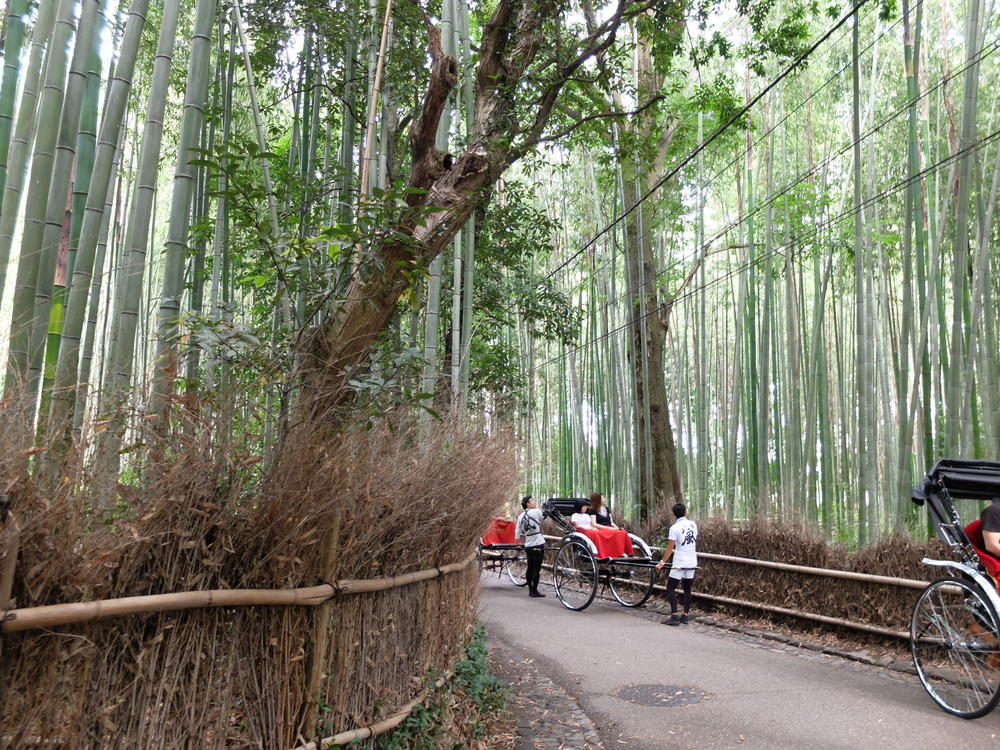 京都・嵐山 竹の小路03