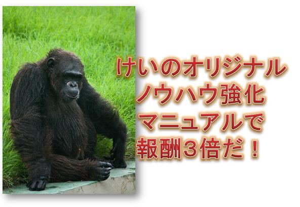 kyouka.jpg