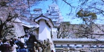 姫路城1211-340