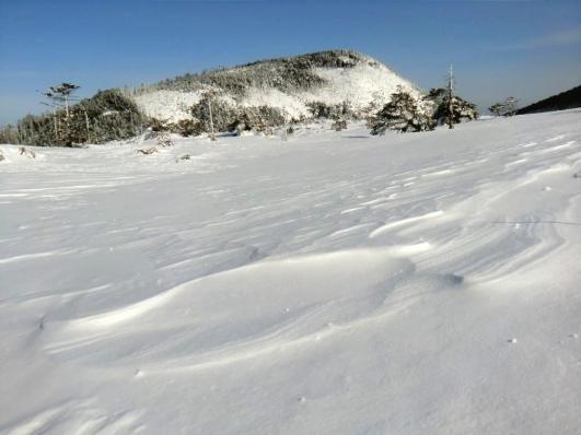 風紋と縞枯山