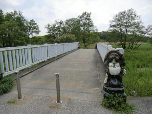 橋にもタヌキ