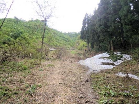 一本杉から城坂コース