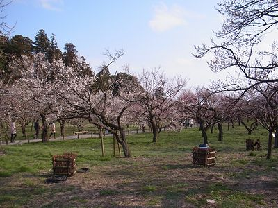 kairakuen (3)