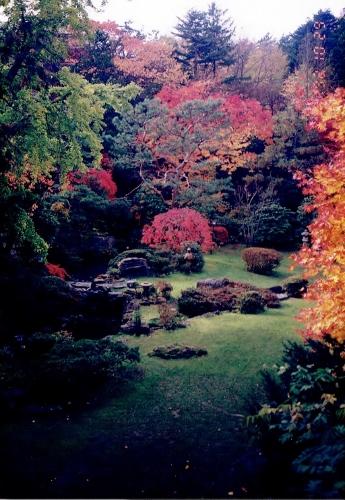 エルム山荘 庭
