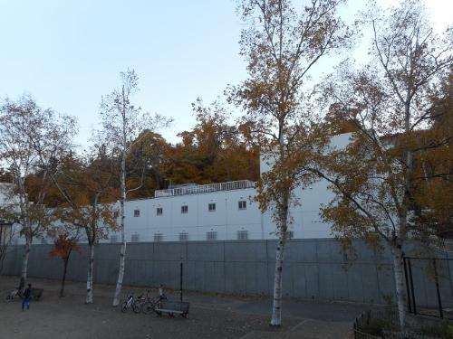 中国総領事館