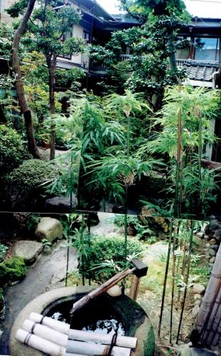 大観荘 中庭
