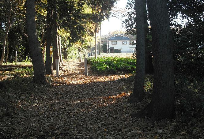 0121_10_茶畑への脇道