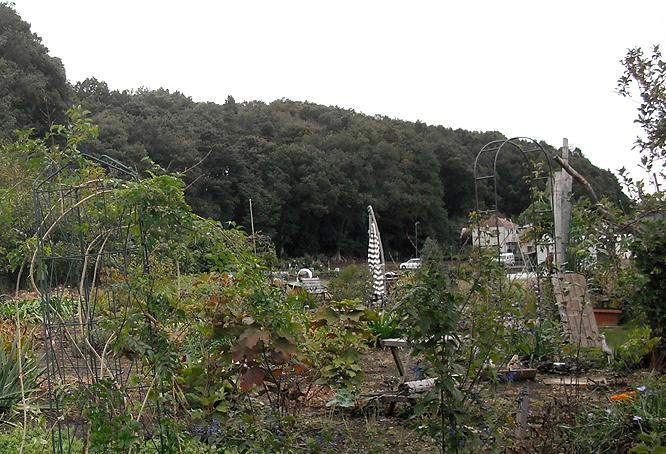 0121_14_10月の景色