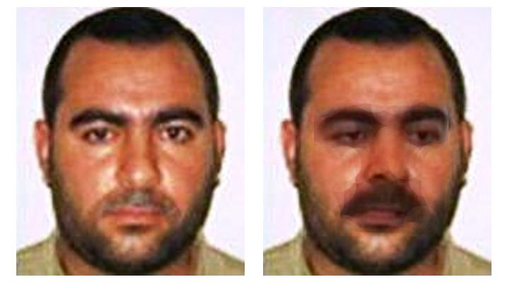 terrorist08.jpg