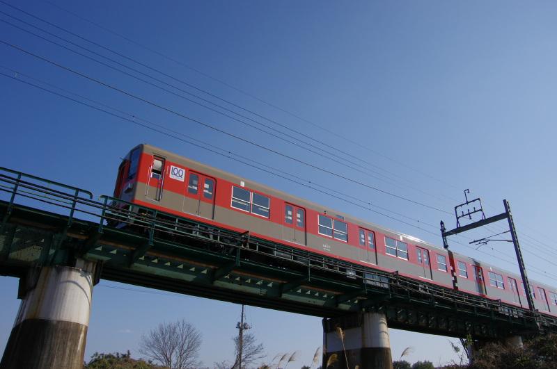 IMGP0674.jpg