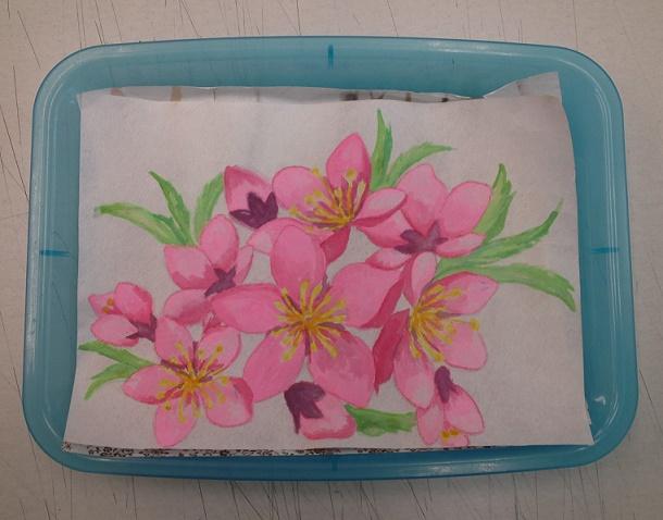 桃の花 (1)