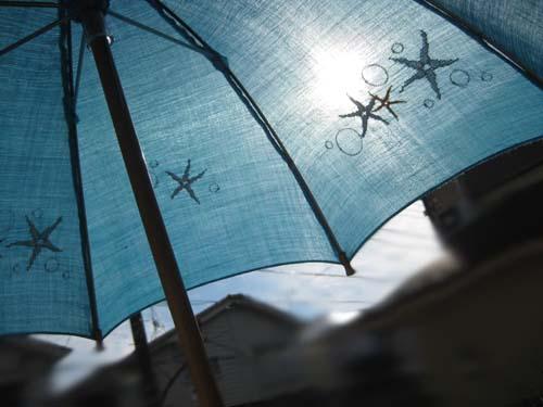 ペタコの日傘 海の歌 ターコイズ