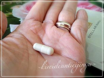 mariaplacenta-003.png