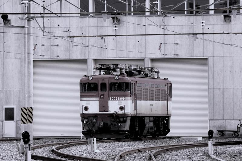 ED75 1008