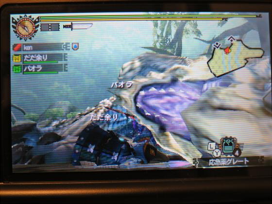 MH4G-頽廃の沼ソロ大剣30