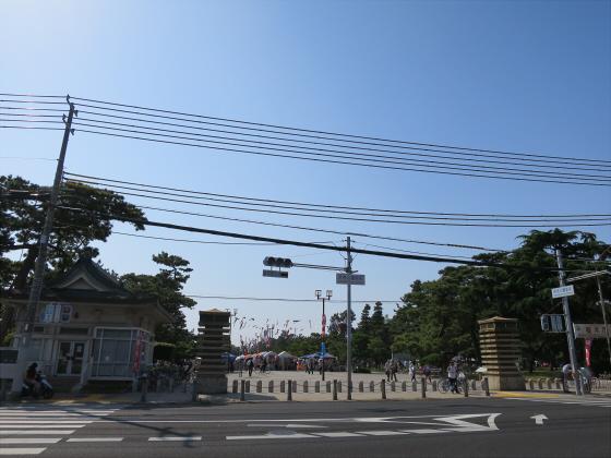 浜寺公園のフリマやバラ園02
