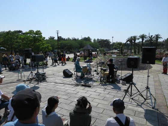 浜寺公園のフリマやバラ園15