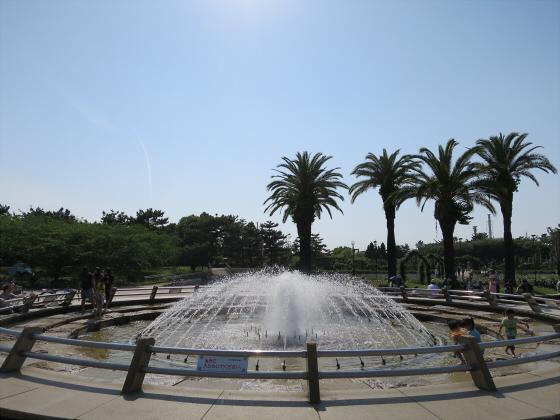 浜寺公園のフリマやバラ園18