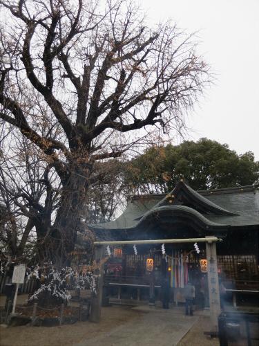 白山神社に初詣2015-02
