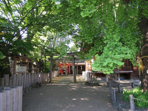 白山神社に初詣2015-08