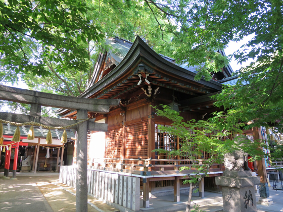 白山神社に初詣2015-11