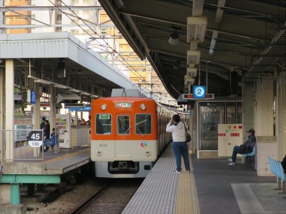 阪神電車-虎ラッピング17