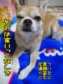 yuruiro20150116_k005