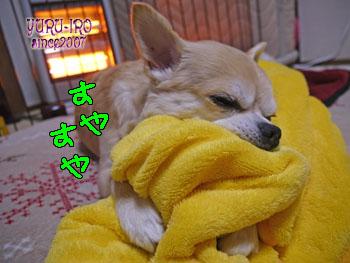 yuruiro20140204_k001
