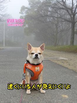 yuruiro20150317_k002