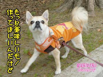 yuruiro20150503_k001