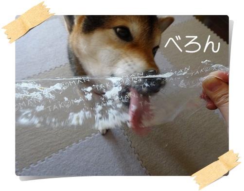 komaro20141227_3.jpg
