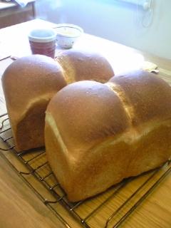山型食パン6日