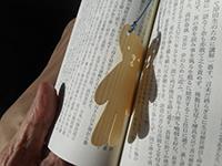 150203shiori (2)