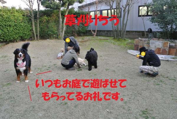 DSC_6858.jpg