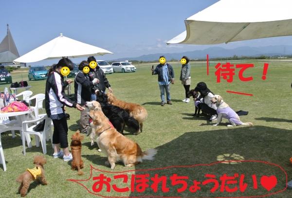 DSC_7867.jpg