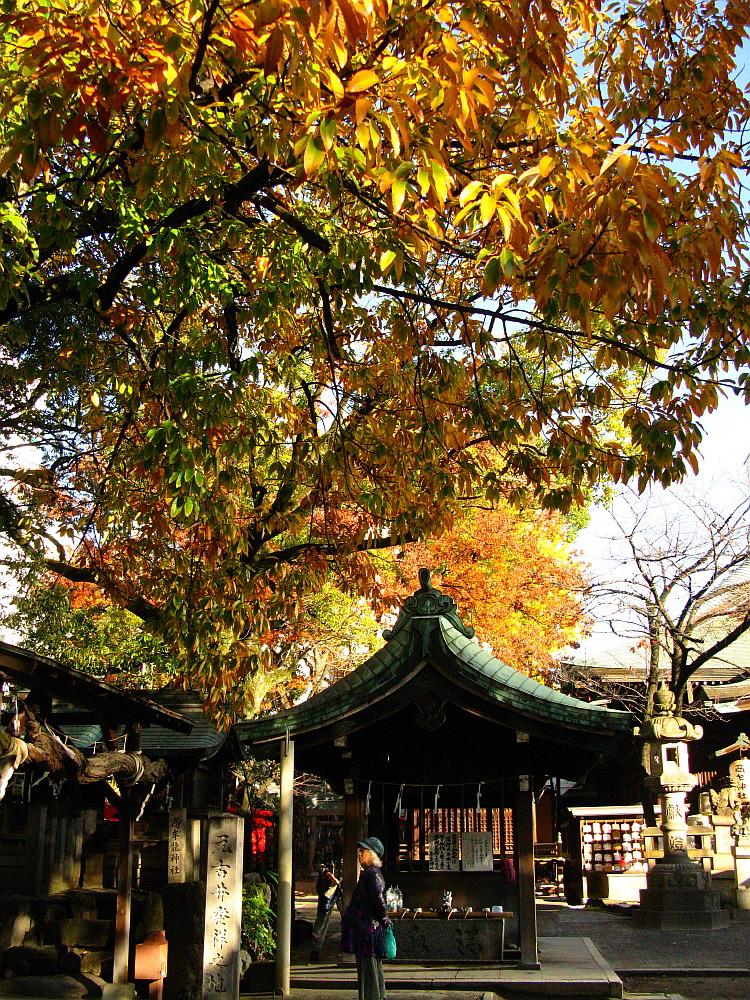 2014_11_27千種:高牟神社 (2)