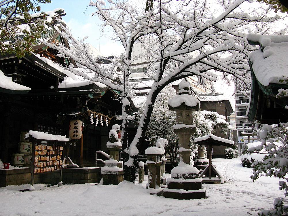 2014_12_18名古屋:大雪- (11)