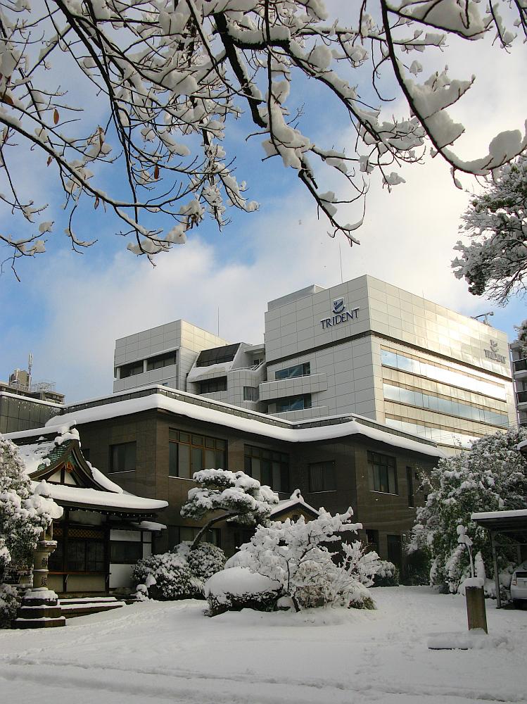 2014_12_18名古屋:大雪- (14)
