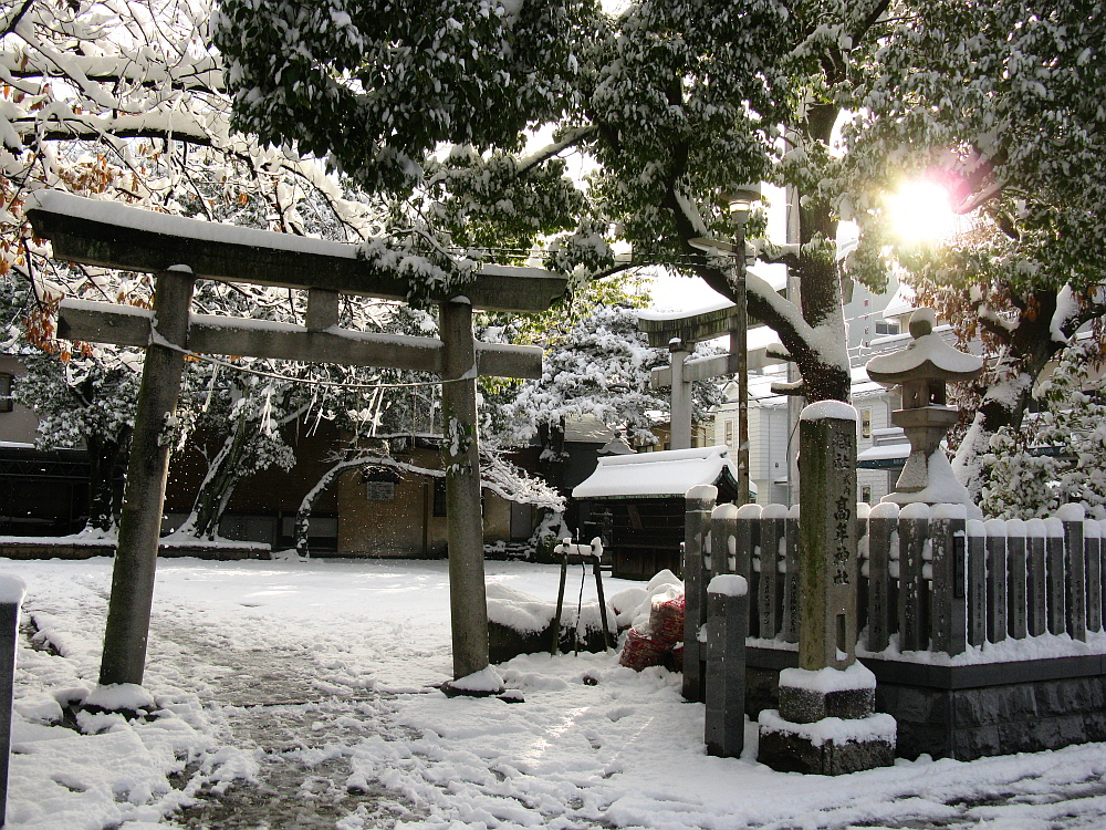 2014_12_18名古屋:大雪- (15)