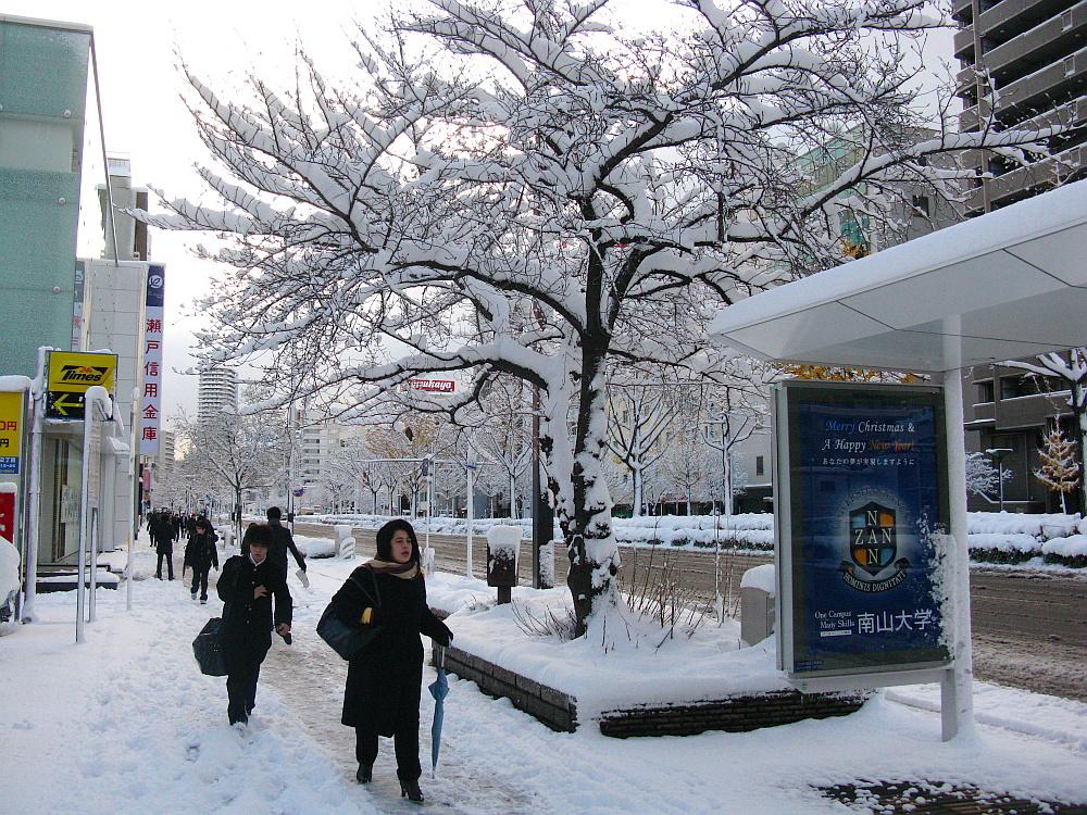 2014_12_18名古屋:大雪 (3)