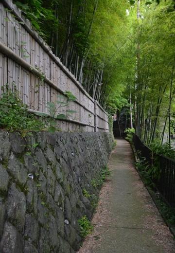 小田原201506 (657)_R