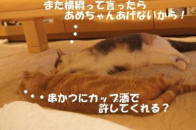 2015070110.jpg