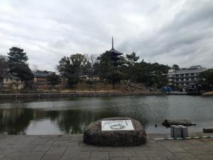 sarusawa0202_convert_20150202114537.jpg