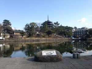 sarusawa0204_convert_20150204113215.jpg