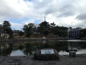 sarusawa0206_convert_20150206113222.jpg
